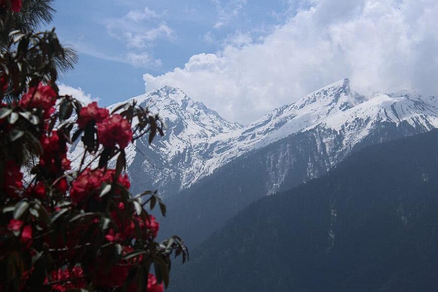 Langtang Trekking Altitude