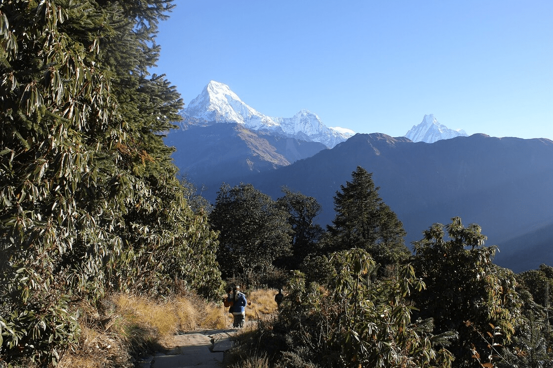 Langtang Earthquake